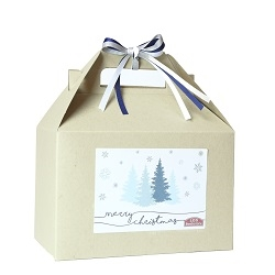 Christmas Gift Box provo mtc delivery, lds missionary gifts, lds missionary christmas gift,