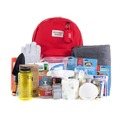 ReadyWise I One-Person Emergency Kit